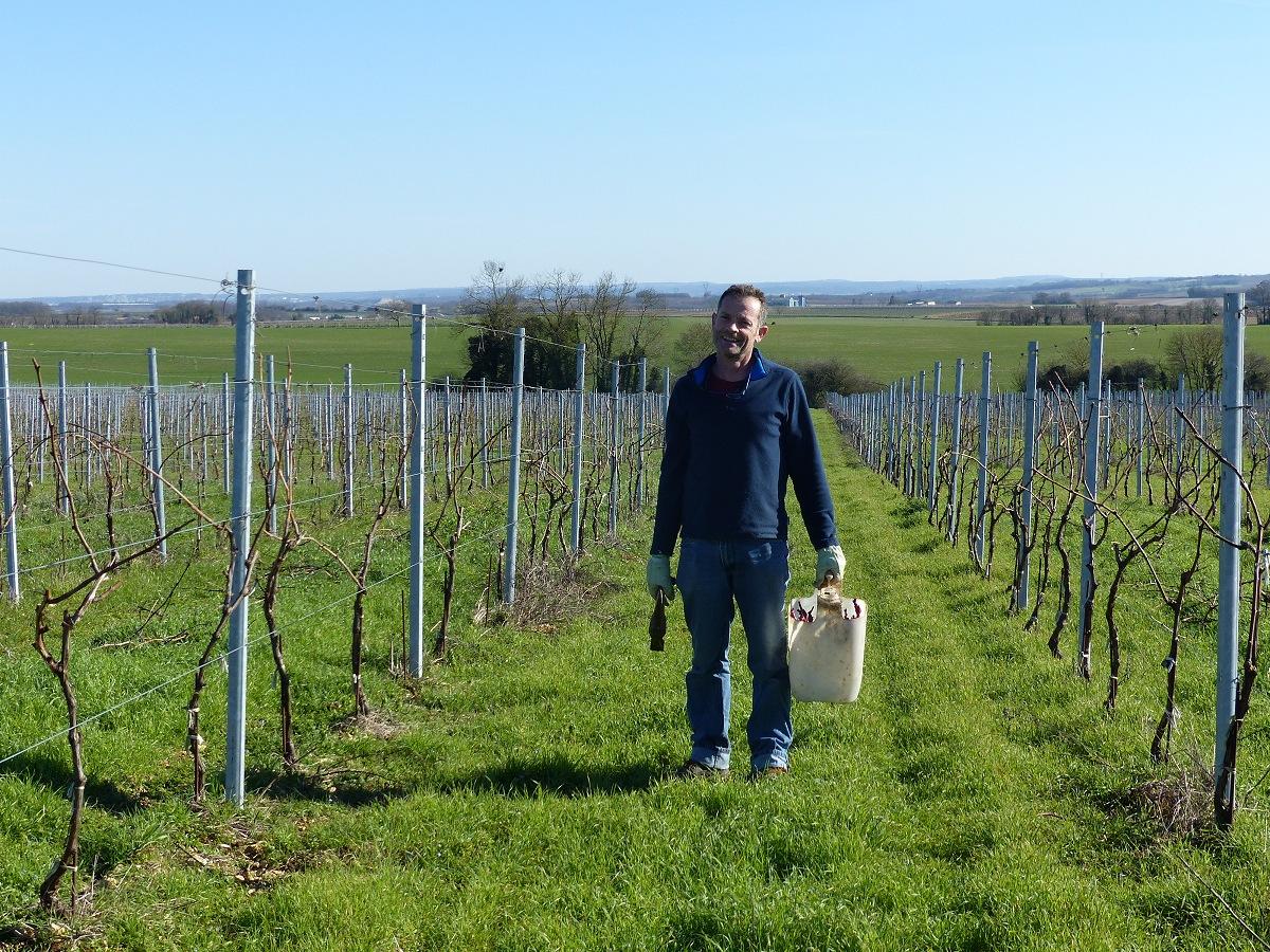Trouver et acheter un vin charentais chez un producteur vigneron ?